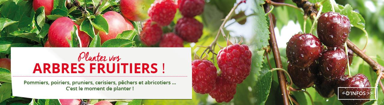 Slider_arbres_fruitiers-1