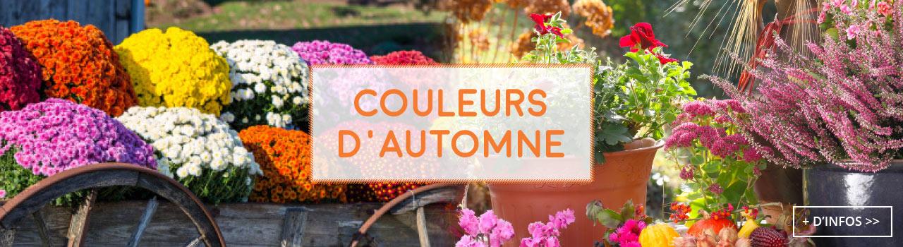 couleurs-automne-fleurs